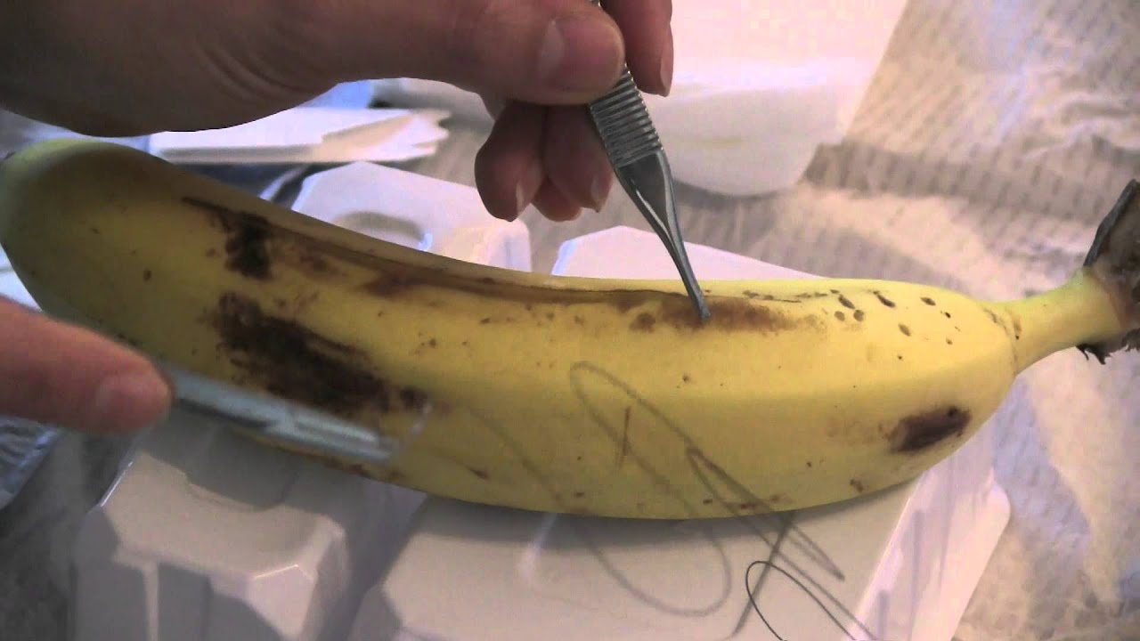 different types of basic sutures