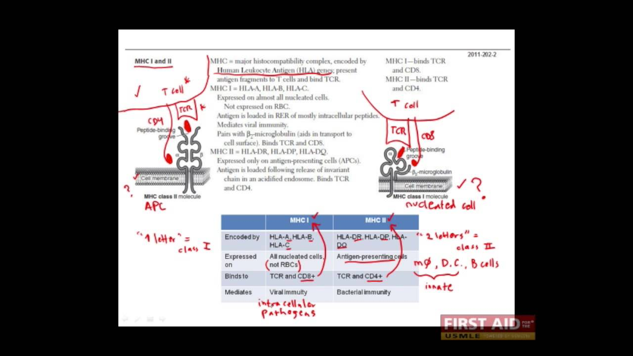 first aid for usmle step1 immuno