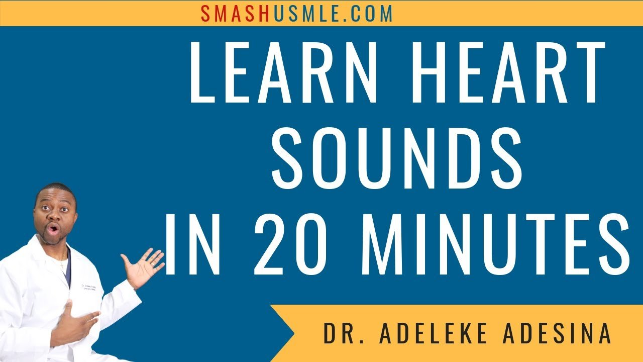 learn heart sounds in 20 minutes