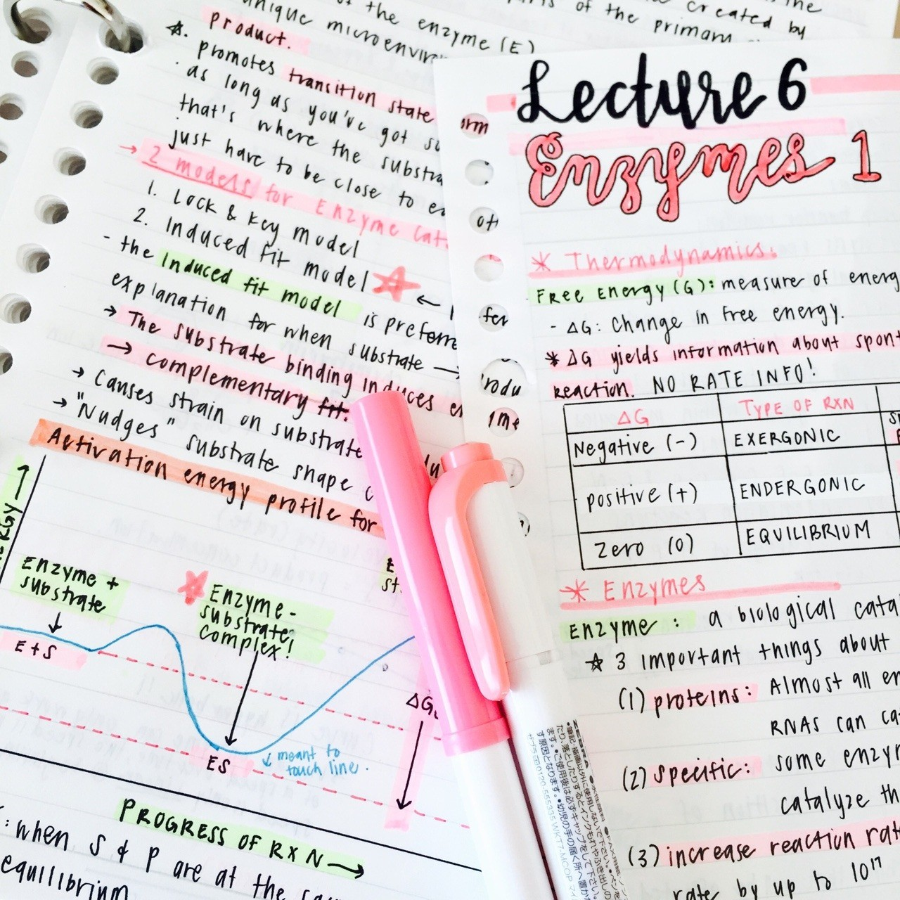 Important Biochemistry Revision Points