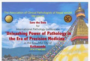 International Pathology Conference