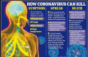 korona corona health tips
