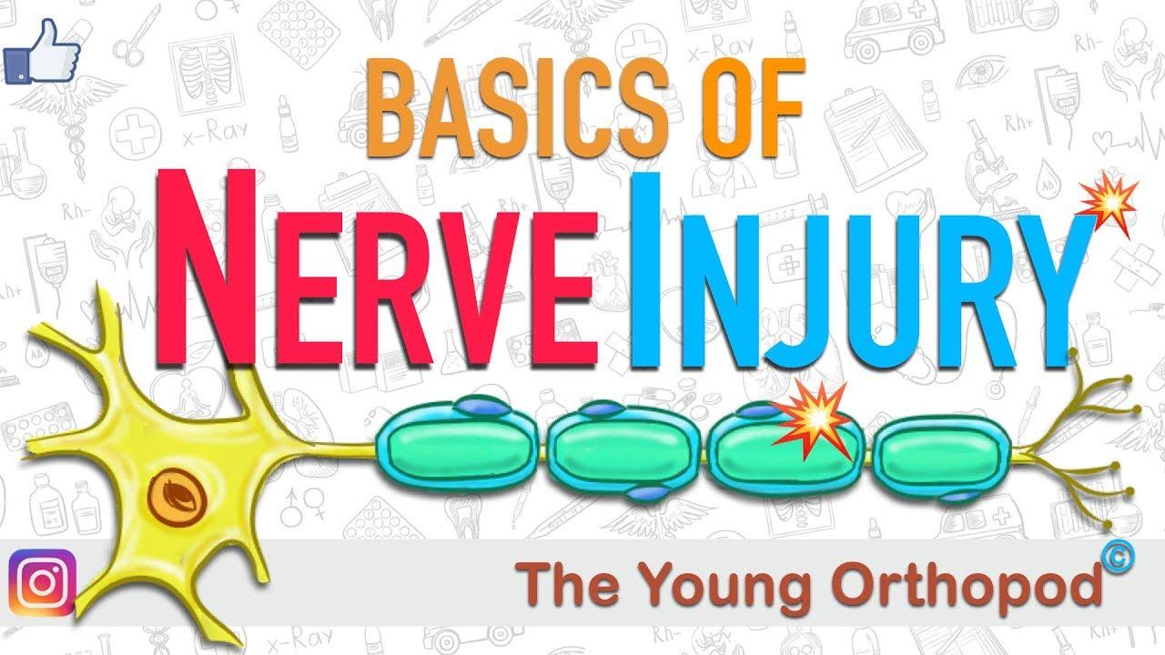 learn basics of nerve injury from video jdzM9b93wJ8