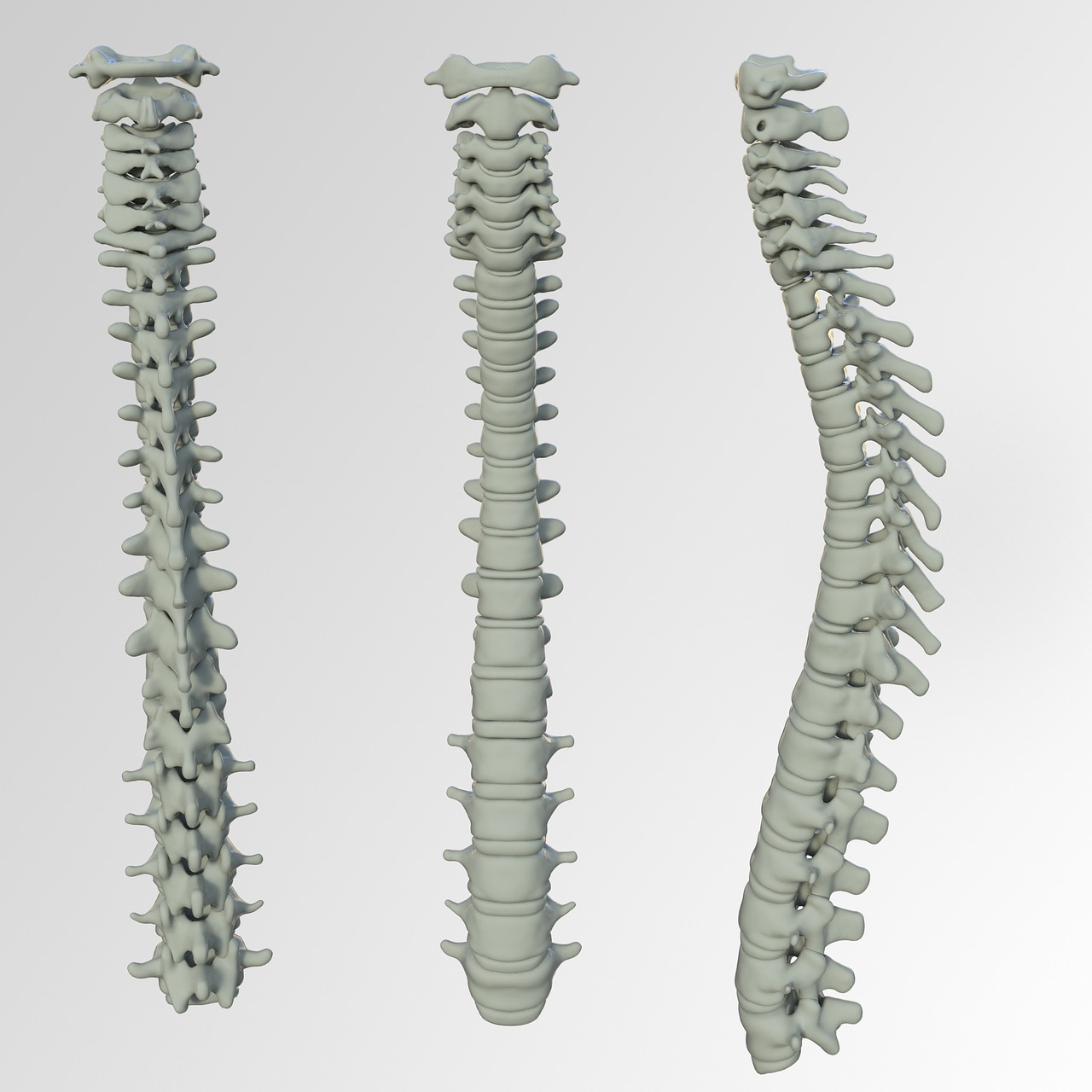 Truth on Middle back pain